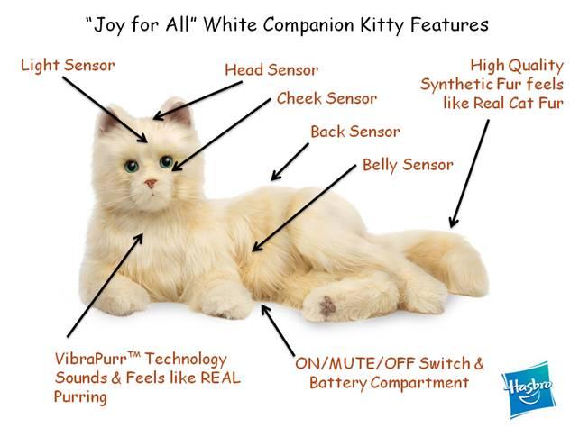 Companion Pet